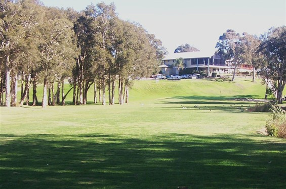 Image result for toukley golf club